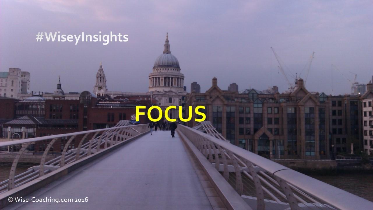 Wisey Insight – Focus